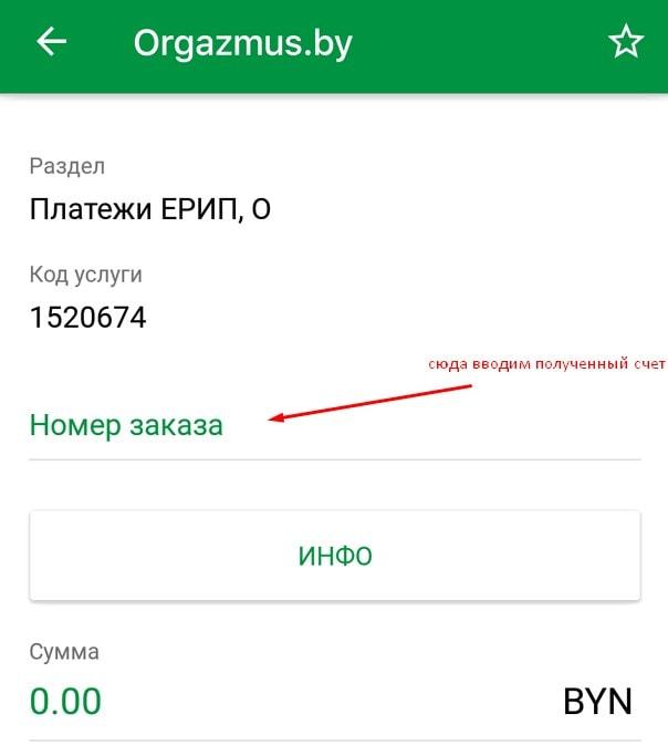 Оплата заказа в секс шопе через ЕРИП в мобильном банкинге в Солигорске